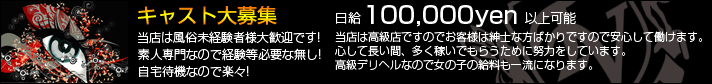 高級デリヘル 東京VIP 求人ページ