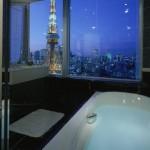 ザ・プリンス パークタワー東京: