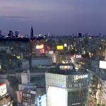 渋谷エクセルホテル東急: